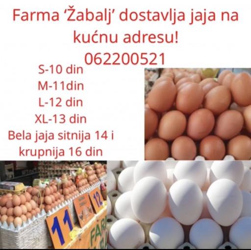 Farma 'Žabalj' - prodaja jaja