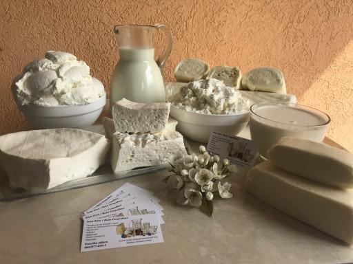Domaći mlečni proizvodi Zorica