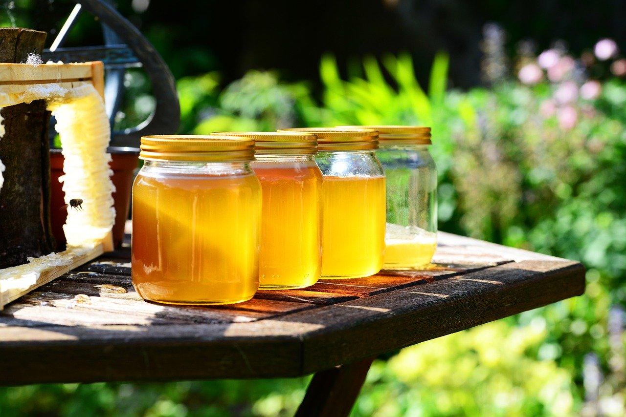 Podnošenje zahteva po košnici pčela je počelo
